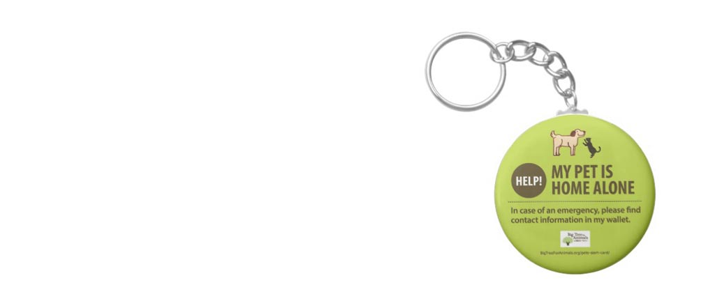Big Tree Pet Alert Card Keychain